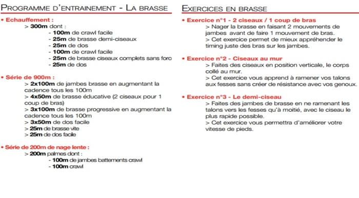 Natation-entrainement-brasse-speedo
